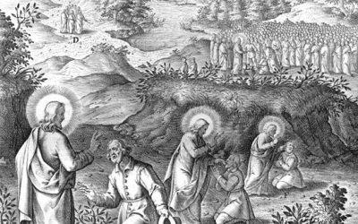Propios para la Misa XI Domingo después de Pentecostés
