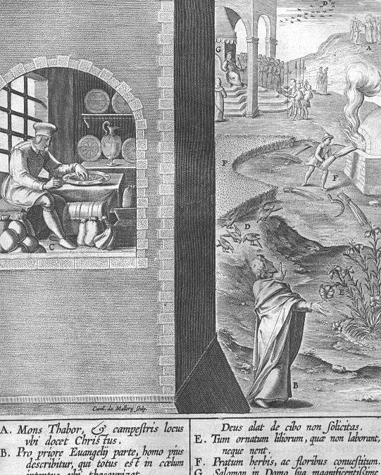 Propios para la Misa. XIV Domingo después de Pentecostés